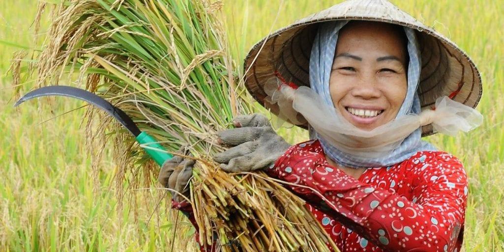 Farmer Asia Woman