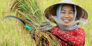 A picture of a smiling Asian woman with a bundle of crops.