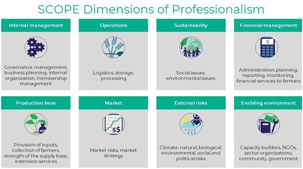 A graphic showing the eight SCOPE dimensions of professionalism and their subdimensions. The first dimension, internal management, has the subdimensions governance, management, business planning, internal organization, and membership management. The second dimension, operations, has the subdimensions logistics, storage, and processing. The third dimensions, sustainability, has the subdimensions social issues and environmental issues. The fourth dimensions, financial management, has the subdimensions administration, planning, reporting, monitoring, and financial services to farmers. The fifth dimension, production base, has the subdimensions provision of inputs, collection of farmers, strength of supply base, and extension services. The sixth dimension, market, has the subdimensions market risks and market strategy. The seventh dimension, external risks, has the subdimensions climate, natural, biological, environmental, social, and political risks. The eighth dimension, enabling environment, has the subdimensions capacity builders, NGOs, sector organizations, community, and government.
